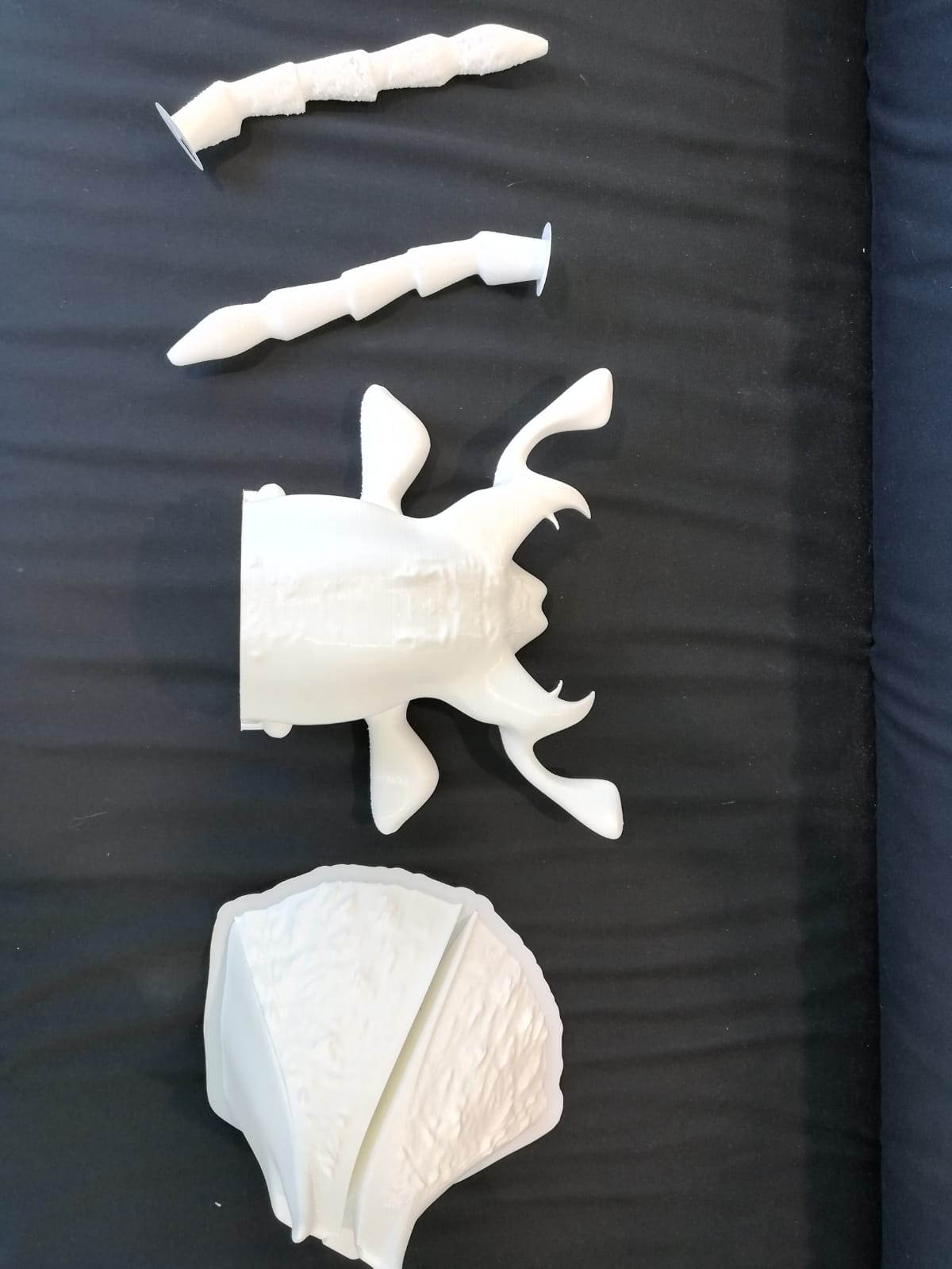 """3D geprinte kever voor """"Wunderkammer"""" tentoonstelling MuseumFabriek"""
